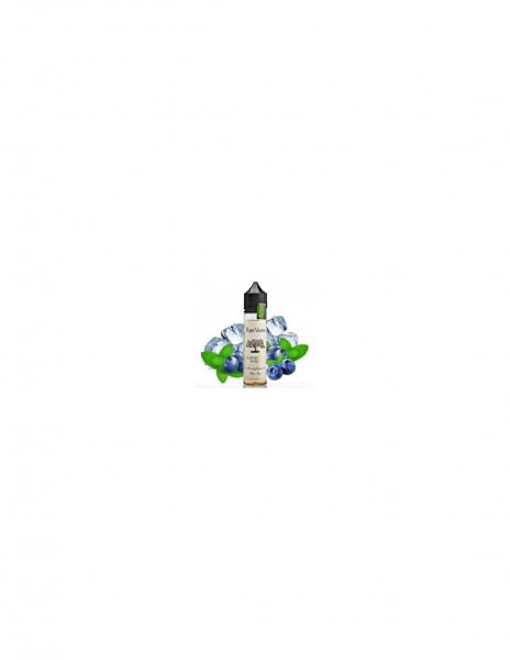 Blueberry Mint Liquido Ripe Vapes Aroma 20 ml Mirtillo e Menta