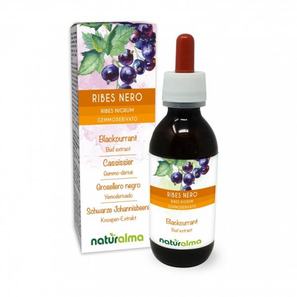 Ribes nero Gemmoderivato 120 ml liquido analcoolico – Naturalma