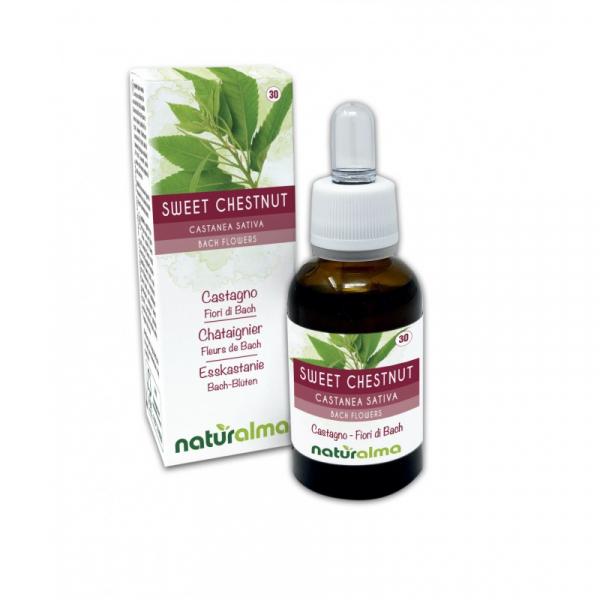 Sweet Chestnut Fiori di Bach 30 ml liquido analcoolico – Naturalma