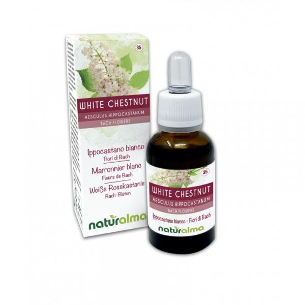 White Chestnut Fiori di Bach 30 ml liquido analcoolico – Naturalma