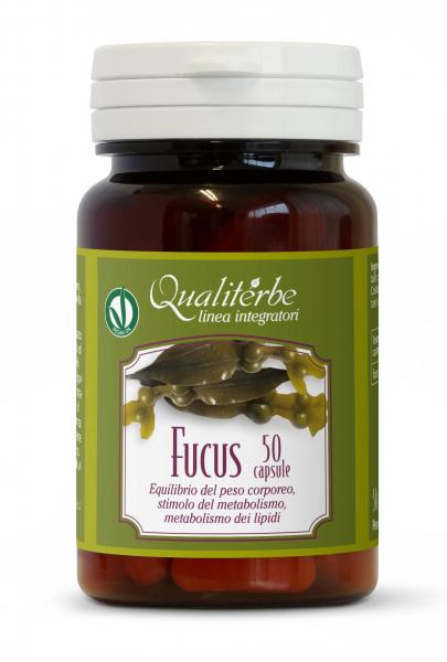 Fucus – Capsules