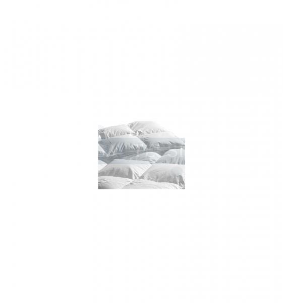 Alaska 4 stagioni Piumino d'oca 1½ piazza 200×200 cm