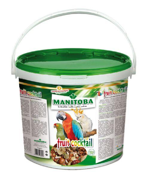 MANITOBA FRUIT COCKTAIL 4 KG