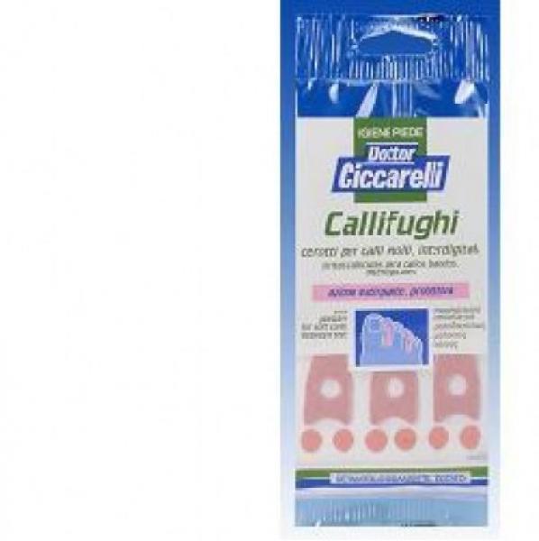 CALLIF CICCARELLI INTERDIG 6P